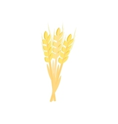 Three stalks of ripe barley isometric 3d icon vector