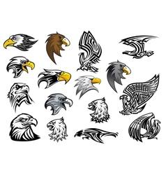 Cartoon eagle falcon and hawk heads vector image vector image