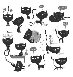 13 black cats vector