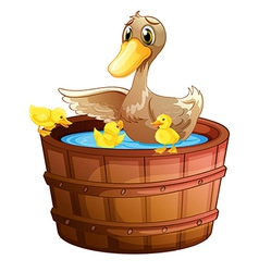 A duck and her ducklings at the bathtub vector image