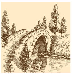 bridge landscape vector image
