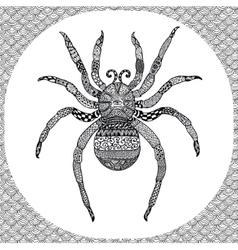 Coloring page black spider entangle vector