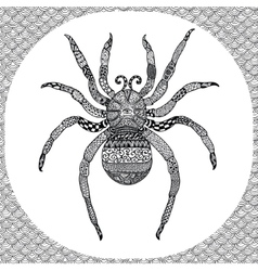 Coloring page of Balck Spider zentangle vector