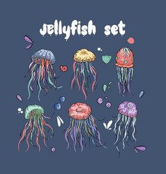 jelly fish set vector image