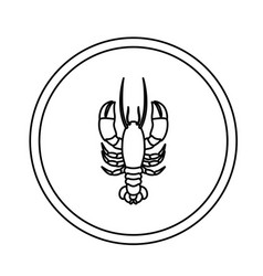 Monochrome line contour with lobster in circular vector
