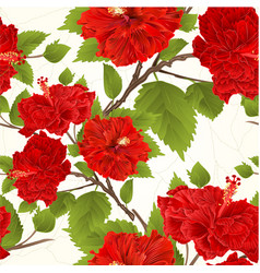 seamless texture branch red hibiscus tropical vector image