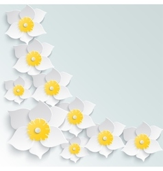 Spring background with white daffodils volume in vector