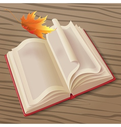 Open book and leaf vector image