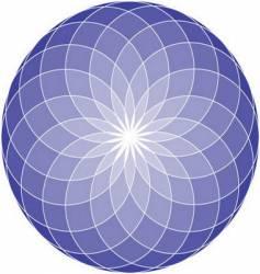 Seed of life mandala vector