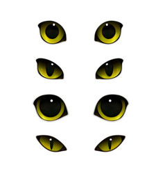 Cats eyes realistic set vector