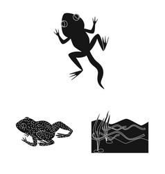 Fauna and reptile symbol vector