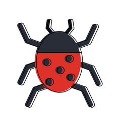 ladybug beetle insect or bug icon image vector image