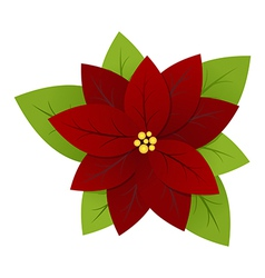 poinsettia vector image