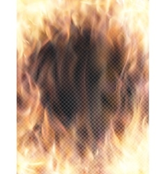 Realistic transparent fire flame banner vector image