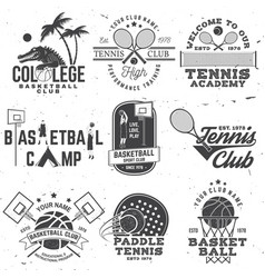 set basketball and tennis badge emblem or sign vector image