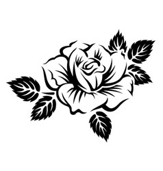 stylized blooming rose vector image