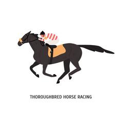Thoroughbred horse racing flat vector