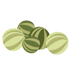 watermelon fresh fruit organic and natural vector image