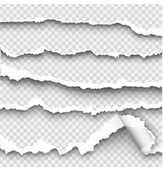 set of torn paper on transparent background vector image