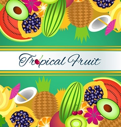 background tropical fruit vector image
