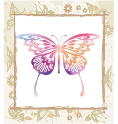 color butterfly in a frame vector image