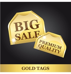 gold tags vector image