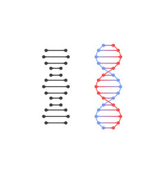 gray and colored dna icons can be used as a logo vector image