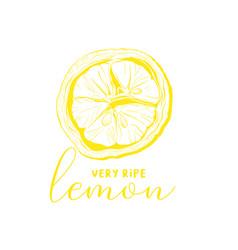 lemon drawing linear vector image