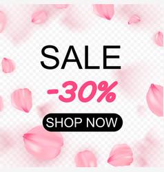 pink sakura falling petals in circle vector image