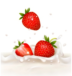 Red strawberry fruits falling into the milky vector image