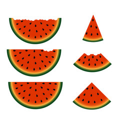 set of watermelon slices vector image