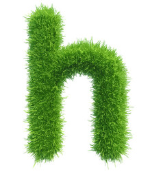Small grass letter h on white background vector