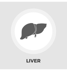 Liver flat icon vector