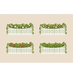 Bushes of white fence vector image