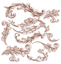collection of hand drawn floral ornaments vector image