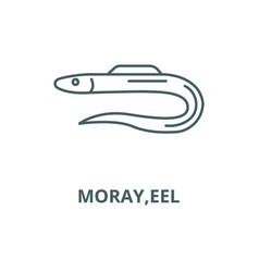 morayeel line icon linear concept vector image