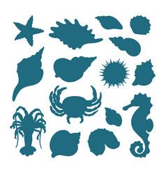 Set seashells shape vector