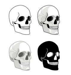 simple drawn skull hell skulls icons vector image