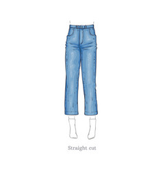 Straight cut style jeans female denim pants vector