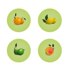 Orange Grapefruit Lime Lemon Citrus Fruits Set vector image
