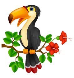 Cute toucan bird cartoon vector image vector image