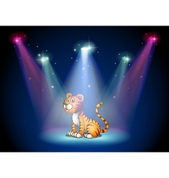 A tiger sitting on the stage with spotlights vector