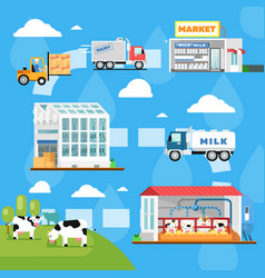 Eco milk manufacturing infographics in flat style vector
