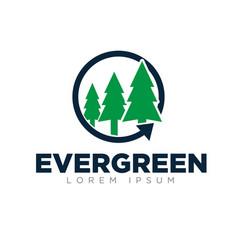 evergreen logo designs simple modern green color vector image
