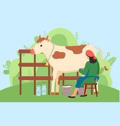 milkmaid is working at countryside milking cow in vector image
