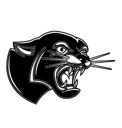 puma in tattoo style design element for logo vector image