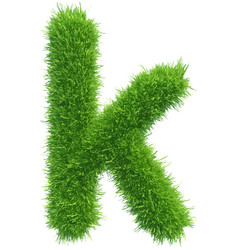 small grass letter k on white background vector image vector image