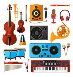 musical instrument isolate on white music vector image