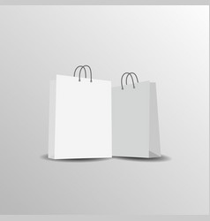 paper bag mock up template vector image