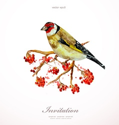 watercolor painting wild bird on branch rowan vector image vector image